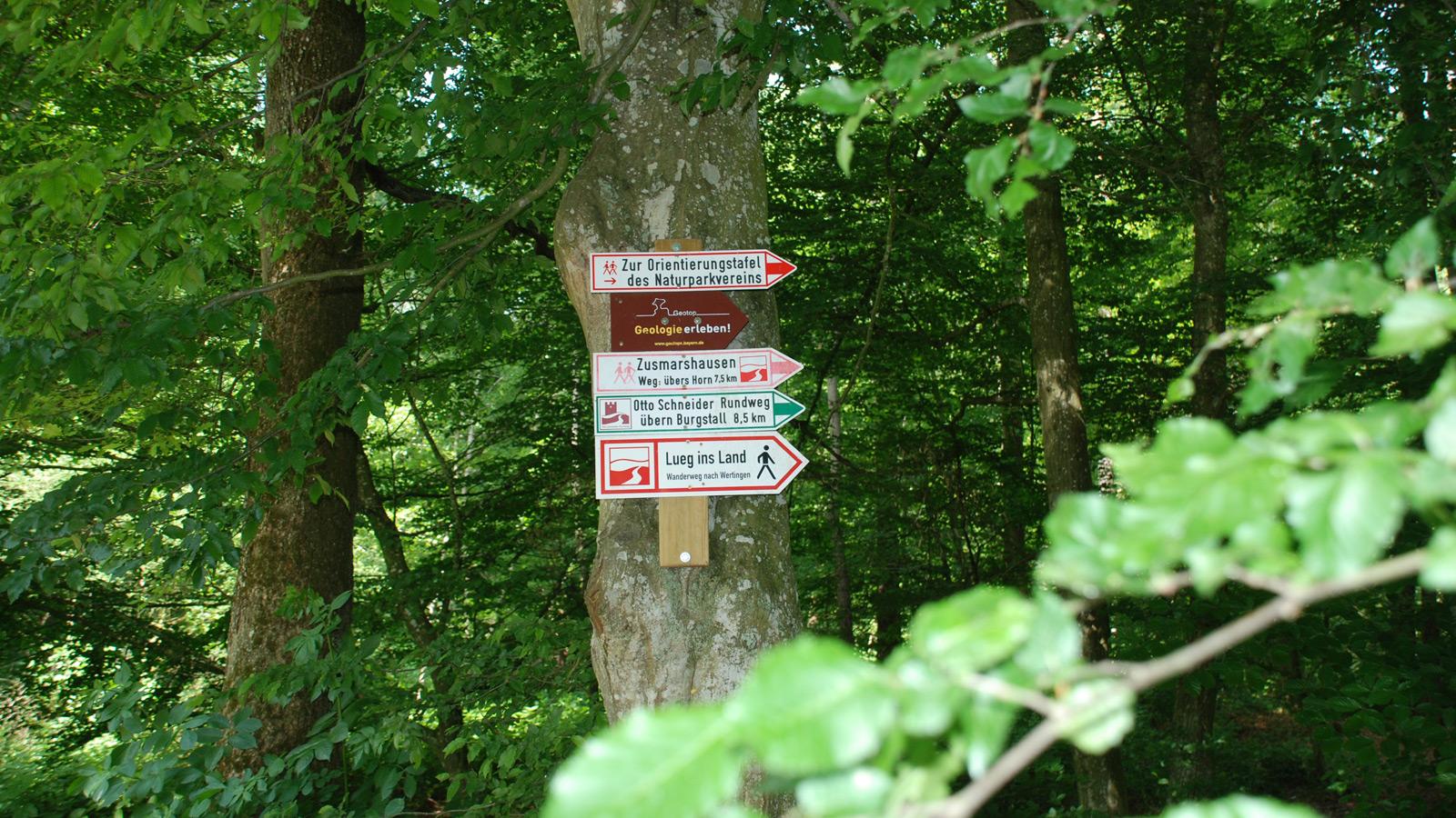 Wanderwegweiser im Wald
